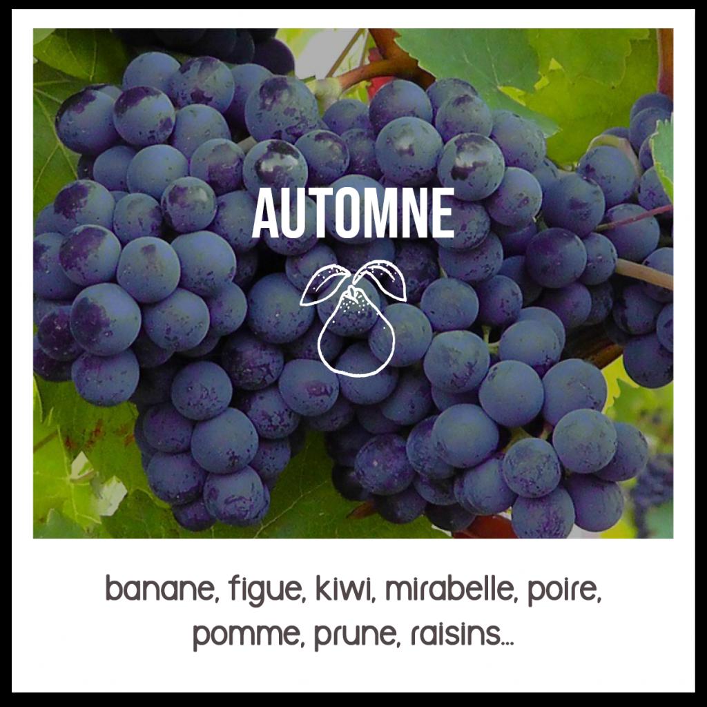 service de livraison de fruits bio et locaux à Nantes Métropole