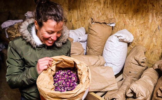 Productrice Marie BOUCHER - Livraison de fruits et légumes BIO - Graines d'ici - Nantes