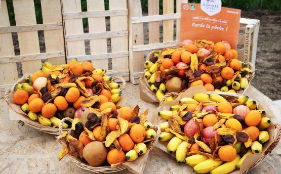 Livraison de corbeilles de fruits bio en entreprise à Nantes