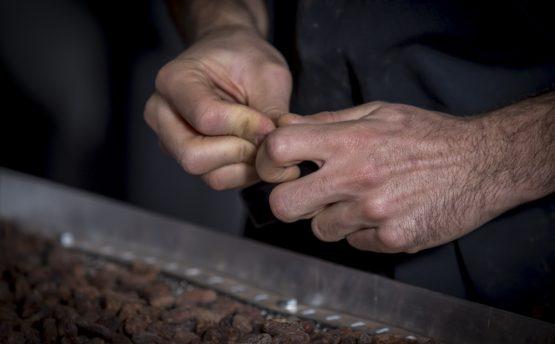 L'Attelier Artisan chocolatier Guérande- Livraison de fruits et légumes BIO - Graines d'ici - Nantes 44