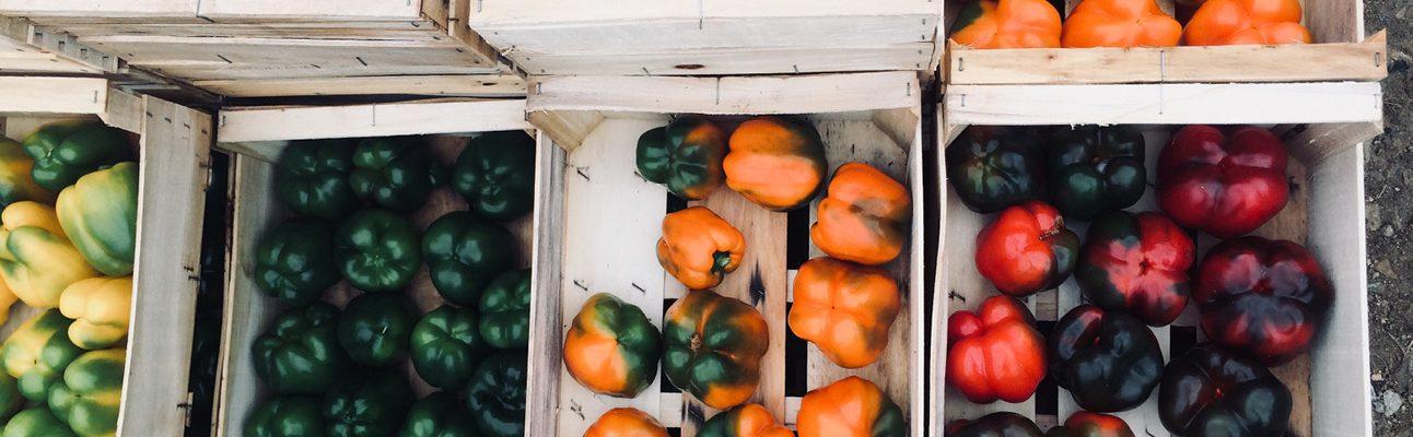 Paniers de légumes Bio livraison Nantes