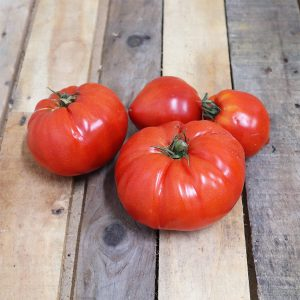 tomate cauralina ou coeuf de boeuf
