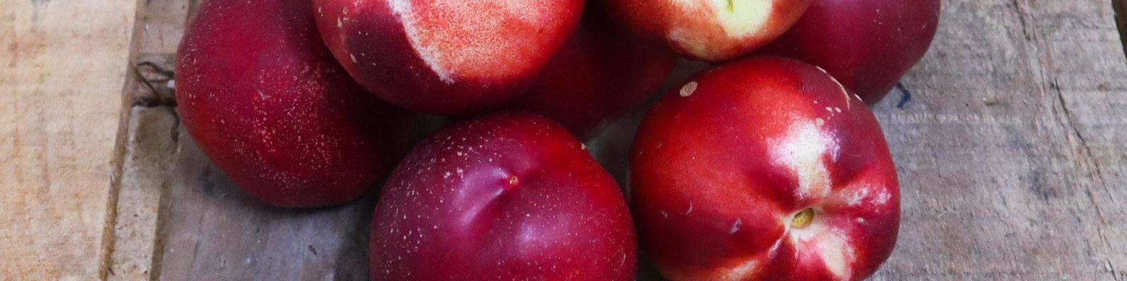 Livraison de fruit bio à Nantes - Graines d'ici