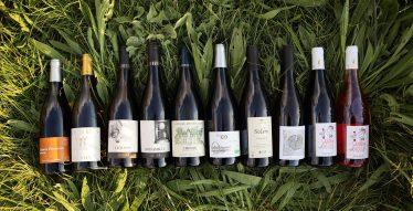 alcool-bio-vin-grainesdici